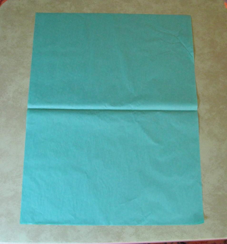 tissue paper pom poms 1